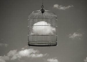 soñar con jaulas